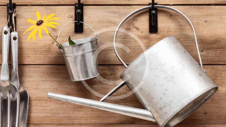 4 Secret Landscaper Tips and Tricks